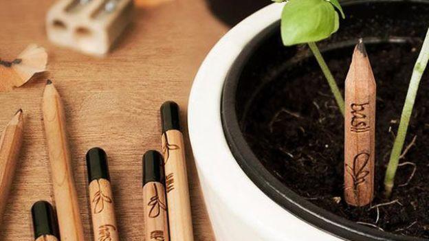 matita con i semi dentro