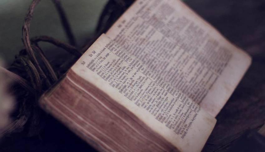 cercare libri