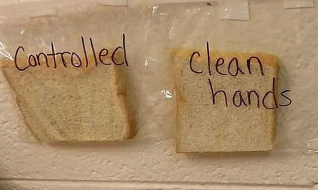 lavarsi le mani