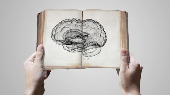Nostro Cervello Quando Leggiamo