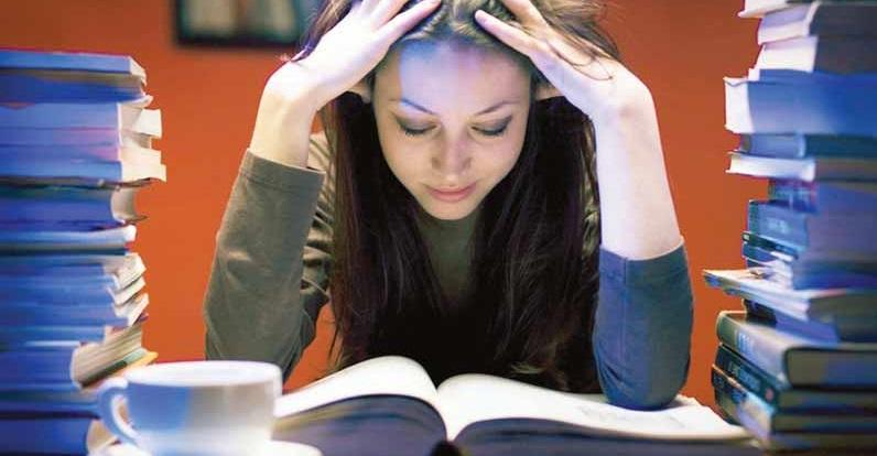 programma da studiare