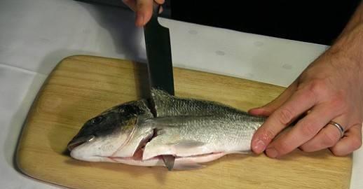 Pesce in Classe
