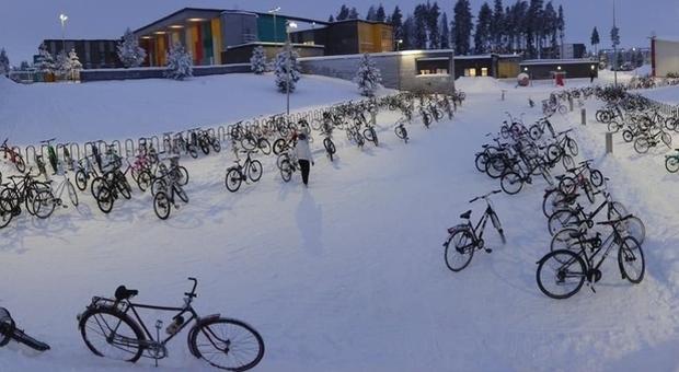 Studenti Vanno a Scuola in Bicicletta