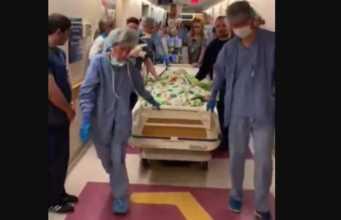 Donare gli Organi