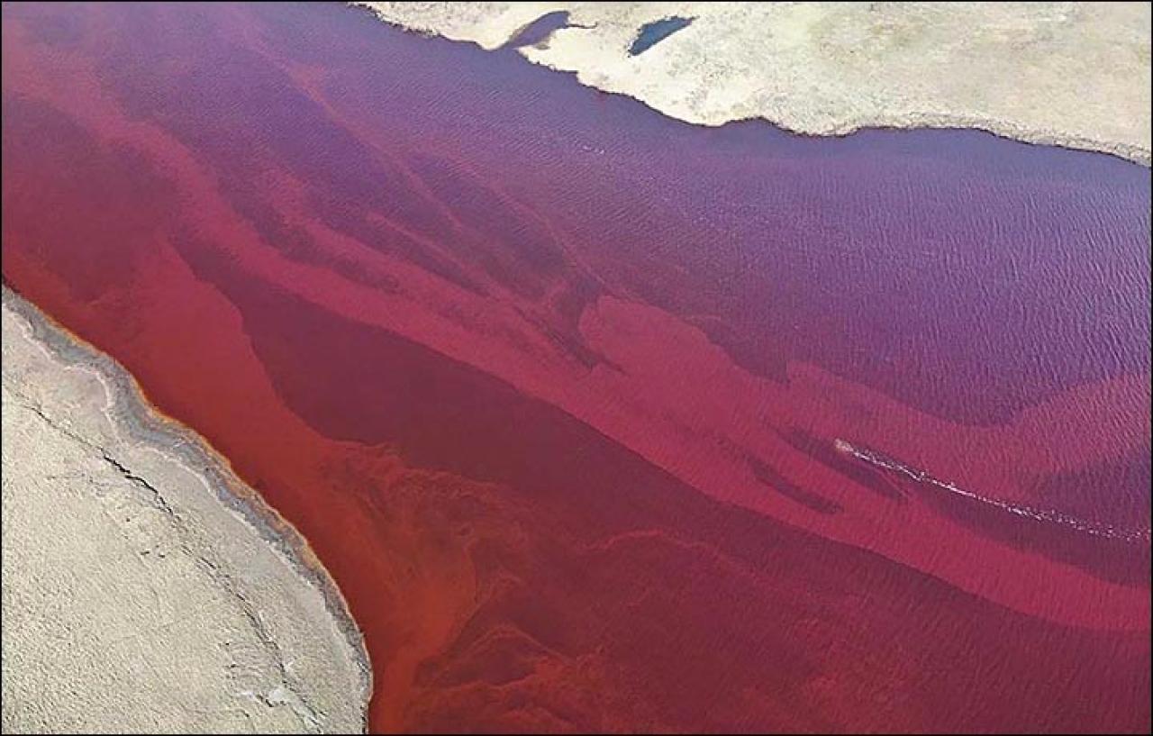 20mila Tonnellate di Gasolio  versate nell'Artico: É Disastr