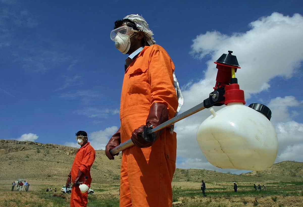 Mongolia: 15enne Muore per Peste Nera, Scatta l'Isolamento p